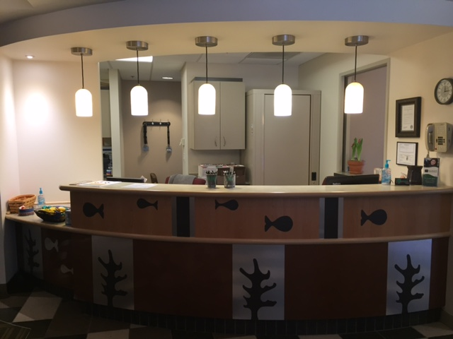 The front desk-this is the first thing you will see when you come through the door.